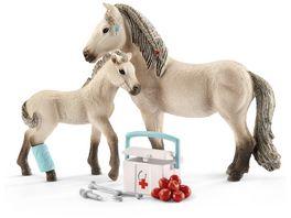 Schleich 42430 Horse Club Hannahs Erste Hilfe Set