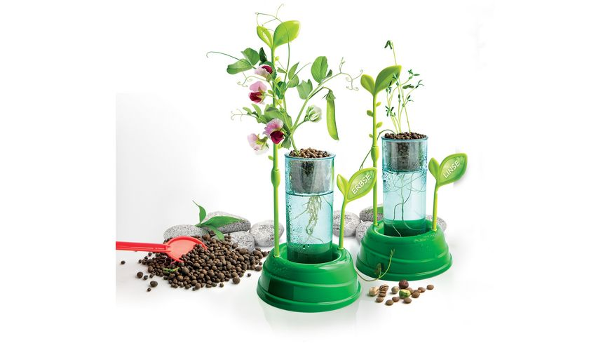 Clementoni Galileo Botanik und Hydrokultur