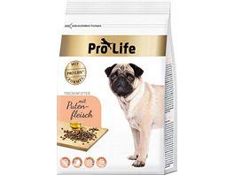 Pro Life Hundetrockenfutter mit Putenfleisch
