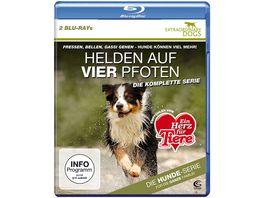Helden auf vier Pfoten Extraordinary Dogs Die komplette Serie 2 BRs