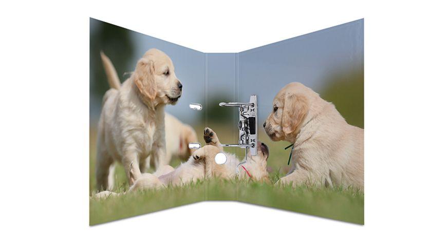 HERMA Motiv Ordner A4 breit Hunde