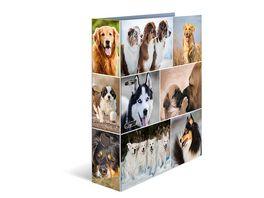 HERMA Ordner A4 breit Hunde