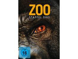 Zoo Season 4 DVDs