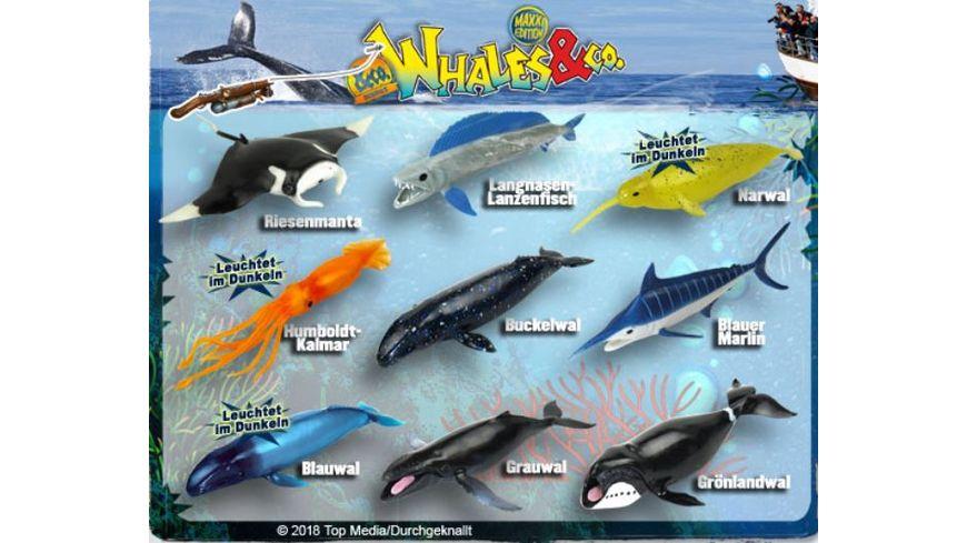 Whales Co Maxxi Edition Sammelfigur 1 Stueck Blindbag