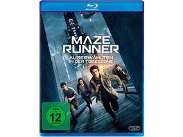 Maze Runner 3 Die Auserwaehlten in der Todeszone