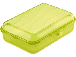 rotho Brotdose Funbox 1 25l