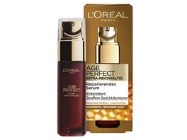 L OREAL PARIS AGE PERFECT Extra Reichhaltig Manuka Serum