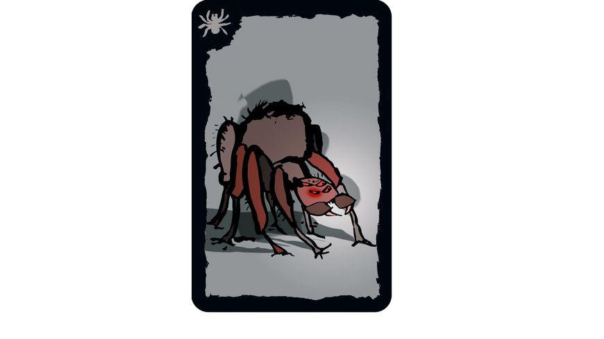 Drei Magier Spiele Kakerlaken Poker