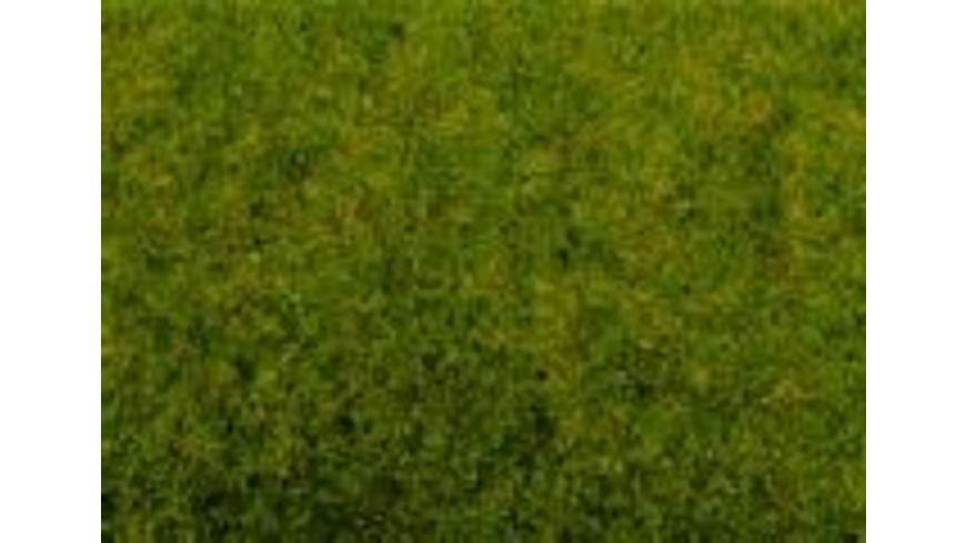 NOCH 50210 Fruehlingswiesen Gras
