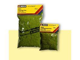 Noch Fruehlingswiesen Gras