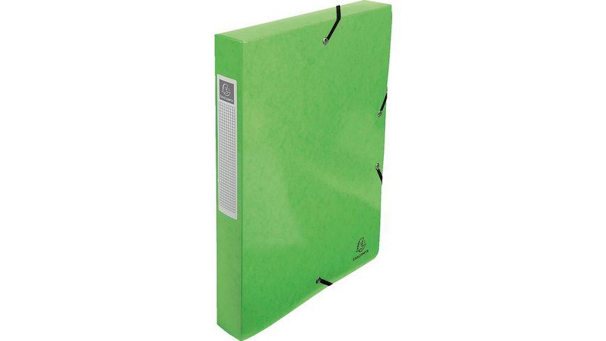 EXACOMPTA Archivbox mit Eckspanner A4 anisgruen
