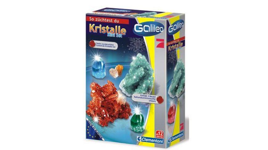 Clementoni Galileo Kristalle selbst zuechten Mini Set