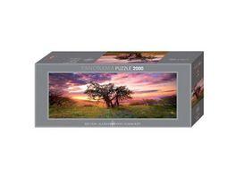 Heye Panoramapuzzle 2000 Teile Alexander von Humboldt Oak Tree