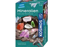 KOSMOS Mitbringexperimente Ausgrabungsset Mineralien