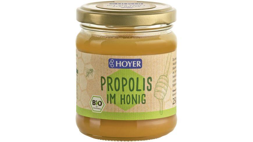 HOYER Propolis im Honig Bio