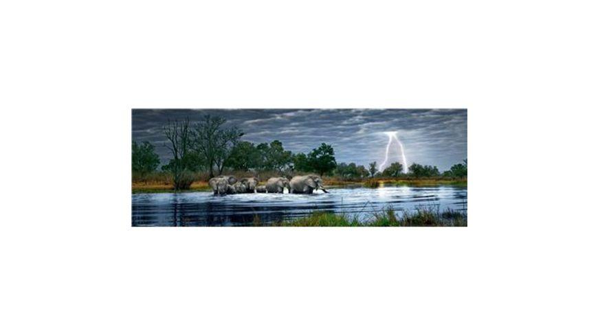 Heye Panoramapuzzle 2000 Teile Alex Bernasconi Herd Elephant