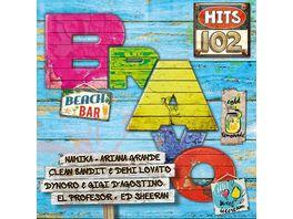 Bravo Hits Vol 102