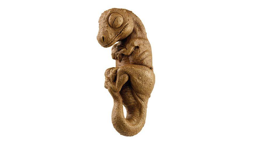 KOSMOS Experimentierkaesten Dino Ei T REX Giganten der Urzeit
