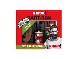 BRISK Bart Box Geschenkpackung