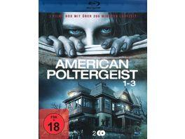 American Poltergeist 1 3 Box 2 BRs
