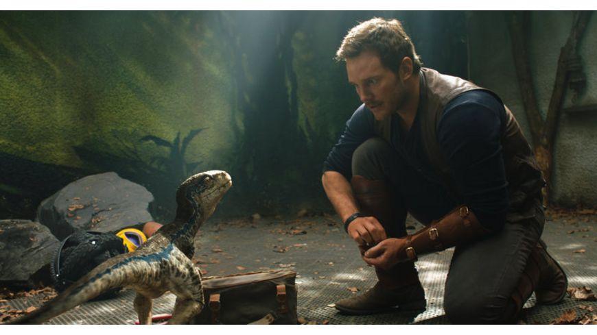 Jurassic World Das gefallene Koenigreich 4K Ultra HD Blu ray 2D