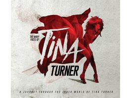 Many Faces Of Tina Turner