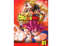 Dragonball Super 1 Arc Kampf der Goetter Episoden 1 17 3 DVDs