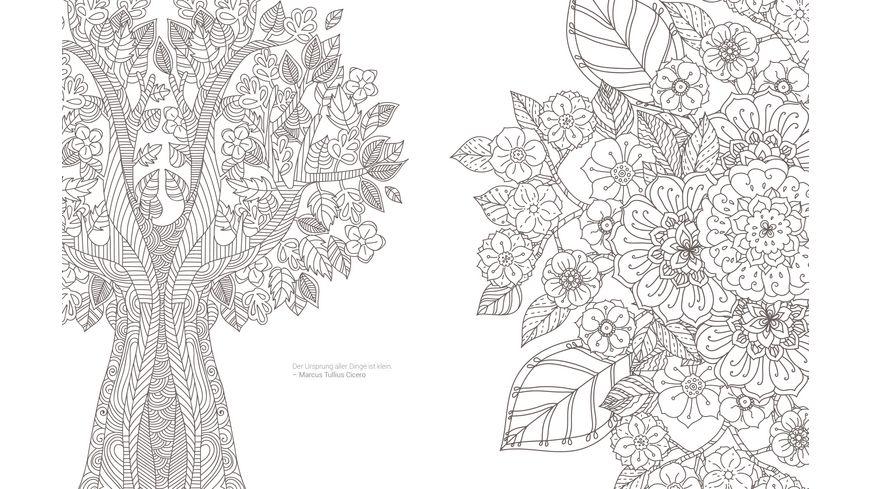 Inspiration Waldtiere 50 zauberhafte Naturmotive kolorieren Farbe rein Stress raus