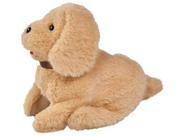 Simba Chi Chi Love Salto Puppy