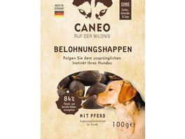 CANEO Hunde Belohnungshappen mit Pferd