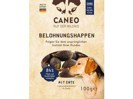 CANEO Hunde Belohnungshappen mit Ente