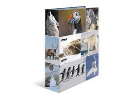 HERMA Motiv Ordner A4 Animals Eiswelten