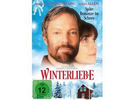 Winterliebe Spaete Romanze im Schnee