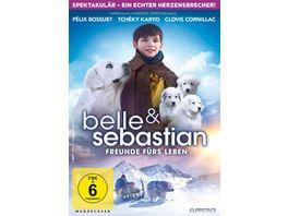 Belle Sebastian Freunde fuers Leben