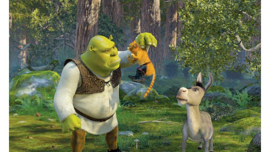 Shrek 2 Der tollkuehne Held kehrt zurueck