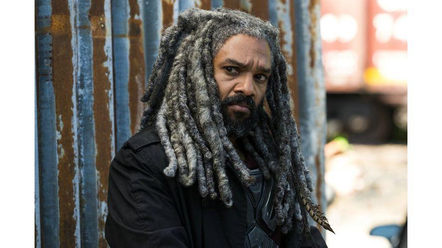 The Walking Dead Die komplette achte Staffel Uncut 6 BRs