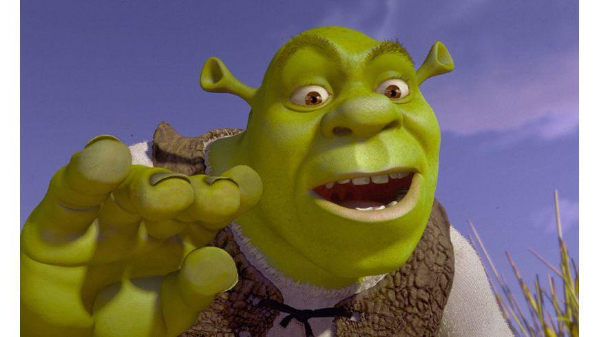 Shrek Der tollkuehne Held