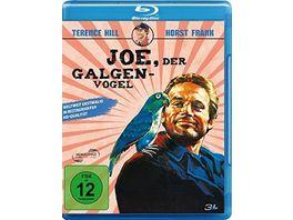 Joe der Galgenvogel