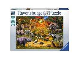 Ravensburger Puzzle Versammlung am Wasserloch 2000 Teile