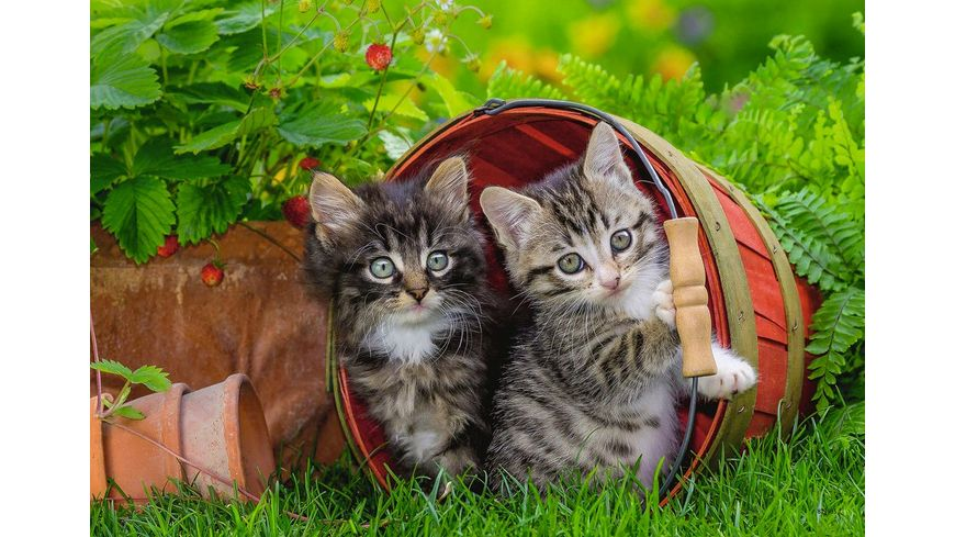Ravensburger Spiel Katzen auf Entdeckungsreise 12 Teile