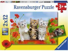 Ravensburger Puzzle Katzen auf Entdeckungsreise 2x12 Teile