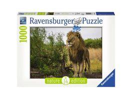 Ravensburger Puzzle Stolzer Loewe 1000 Teile