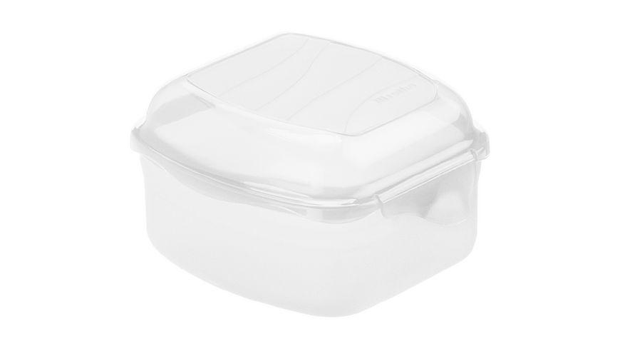 rotho Brotdose Funbox 0 45 l 6 5 cm