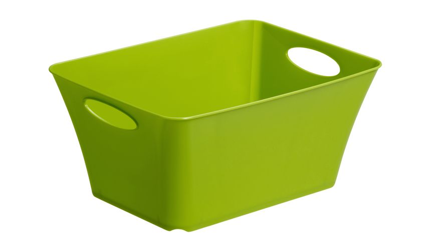 rotho Box Livingbox 5 l gruen