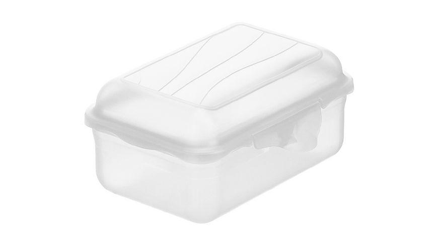 rotho Brotdose Funbox 0 4 l transparent
