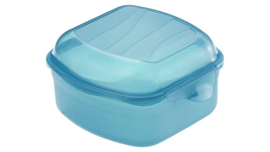 rotho Brotdose Funbox 0 45 l aqua 6 5 cm