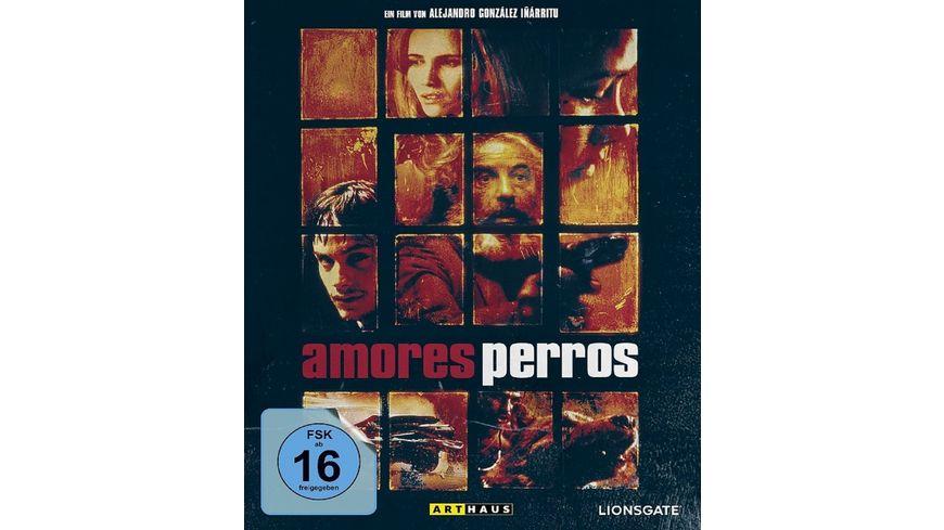 Amores Perros Special Edition