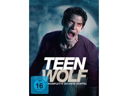 Teen Wolf Staffel 6 7 DVDs