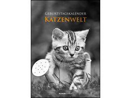 Geburtstagskalender Katzenwelt