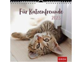 Fuer Katzenfreunde 2019 Wandkalender